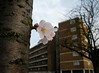 blossom block by anna hillman