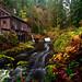 Cedar Creek Grist Mill by photos by Crow