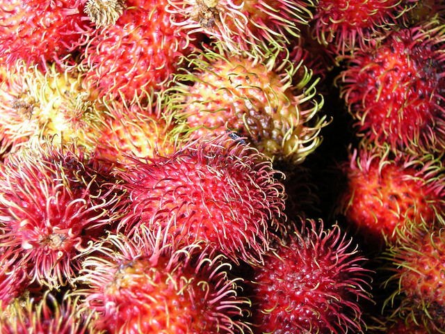 Mamón Chino   A very tasty fruit originally from Asia that ...
