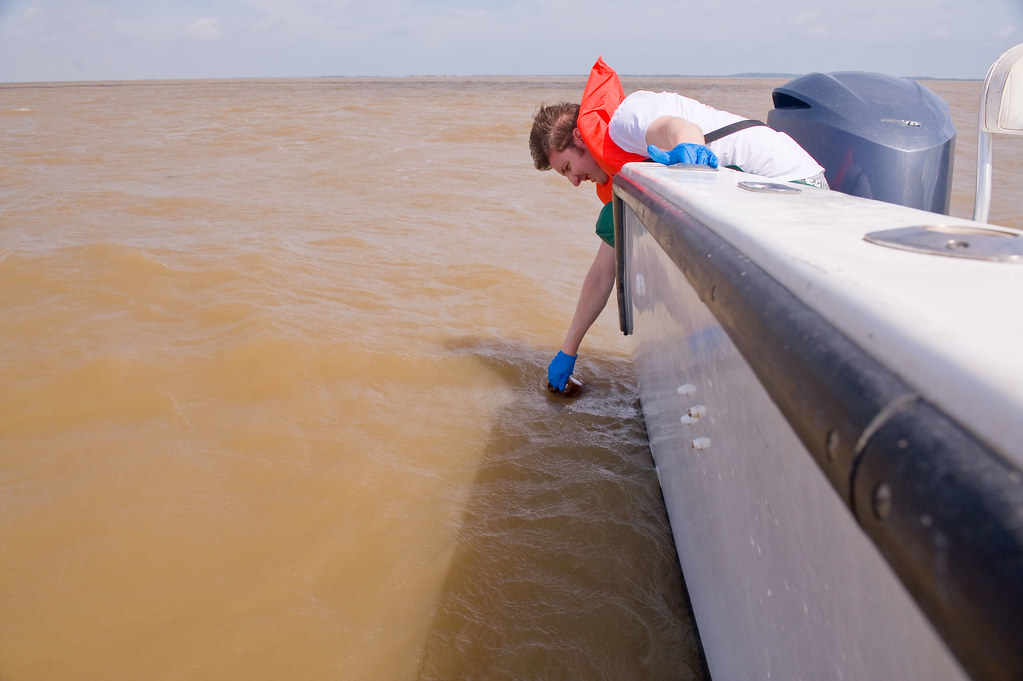 Water sampling in the Gulf  | May 12, 2010  Out of Cocodrie