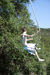 adventure, tree, green, extreme sport, physical exercise,