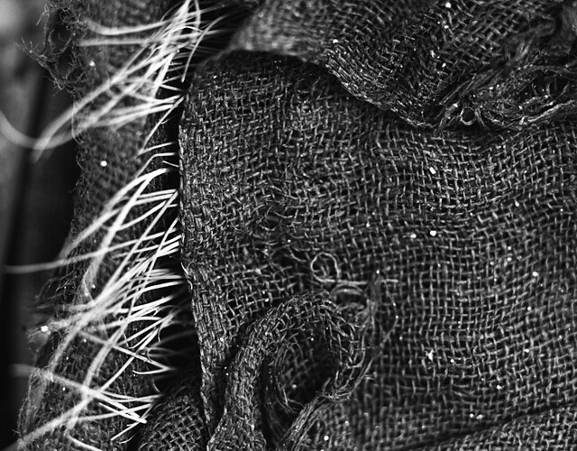 Burlap Blanket by jordan starr