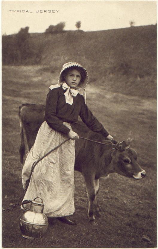 Jersey Milk Maid