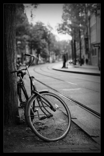 Rain on Film - Bike & Tree