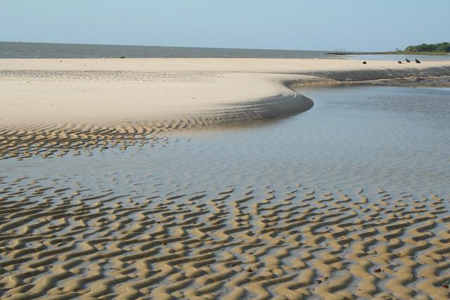 Praia de São João1