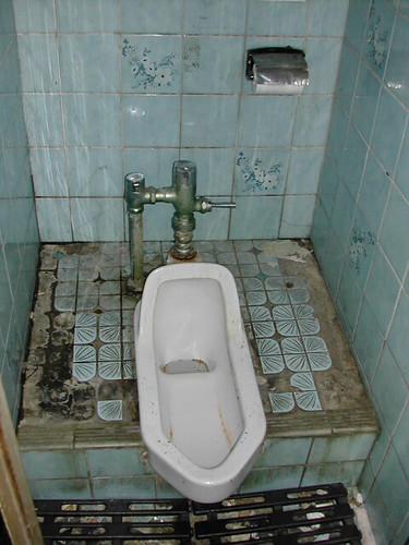 Japanese toilet camera