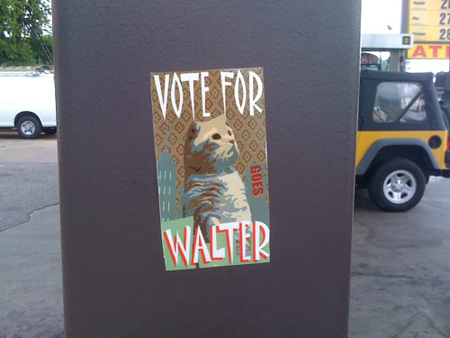 Vote For Me walter cat
