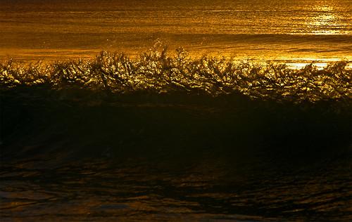 sea mer beach water backlight contraluz gold golden vacances mar agua paradise or playa tropical tropic seychelles paraiso vacaciones holydays aigua platja oro vespre contrallum paradís mahé paradisiac mygearandmepremium mygearandmebronze fercopiapaper