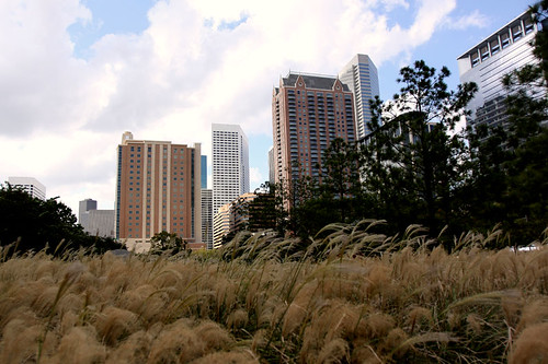 Discovery Green, downtown Houston