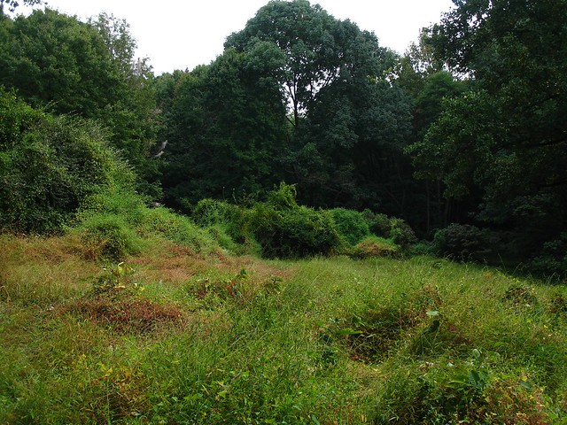 Schuylkill Center Nature Preschool Reviews