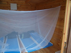swimming pool(0.0), jacuzzi(0.0), mosquito net(1.0),