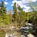 For John on his birthday... a great trout fishing stream in Montana, USA! by victoriaporter *