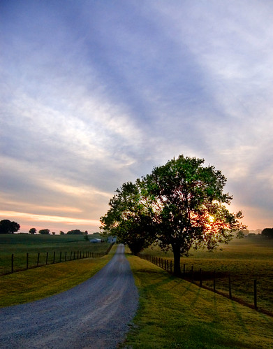 d50 dawn nikon midsummer tennessee july michaels blountcounty tennpenny photoscliff
