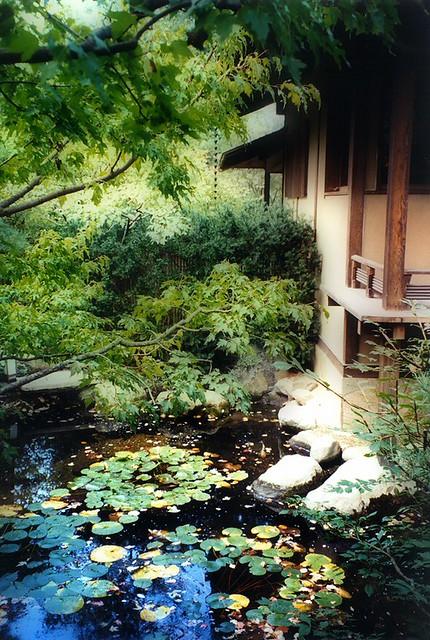 Anderson Japanese Gardens Rockford Il Flickr Photo