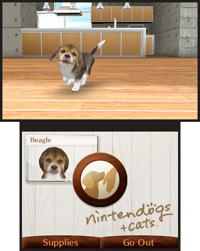 Nintendogs Cats Comment Faire Des B Ef Bf Bdb Ef Bf Bd Chat