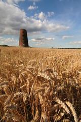 Derelict Windmill