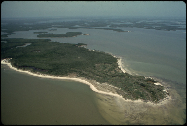 Photograph of One of the Uninhabited Islands between the Southern Coast and the Florida Keys Documerica 1975 by Flip Schulke 1930-2008.