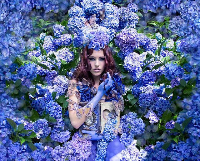 Kirsty Mitchell - Wonderland : The Secret garden
