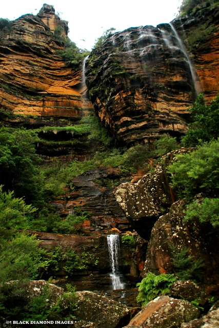 Wentworth Falls, Blue Mountains, NSW, Australia