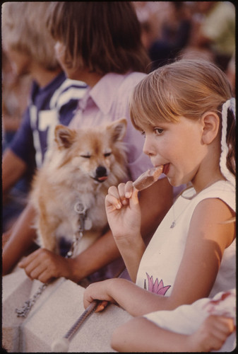 Youngster Unknowingly Has Shared Her Ice Cream Stick with the Dog as She Watches Judging During the Kiddies Parade in Johnson Park in New Ulm, Minnesota