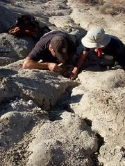 RRC Fossil Hunting Field Trip 2009