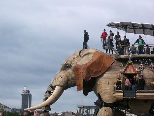Le Grand Eléphant // The Great Elephant