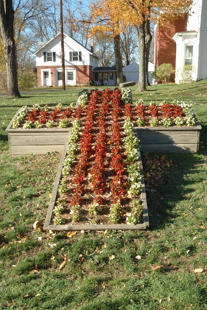 Cross shaped flower bed flickr photo sharing for Flower bed shapes designs