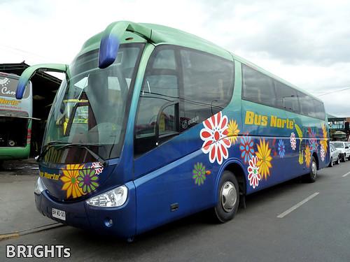 Bus Norte.-