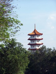 observation tower(0.0), tree(1.0), pagoda(1.0), tower(1.0),
