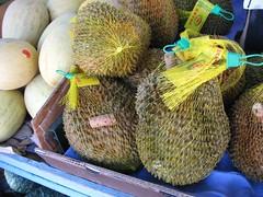 coconut(0.0), plant(0.0), produce(1.0), fruit(1.0), food(1.0), durian(1.0), gourd(1.0),