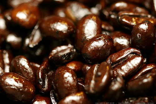 san francisco bay french roast oozing oil from every bean    MG 4087