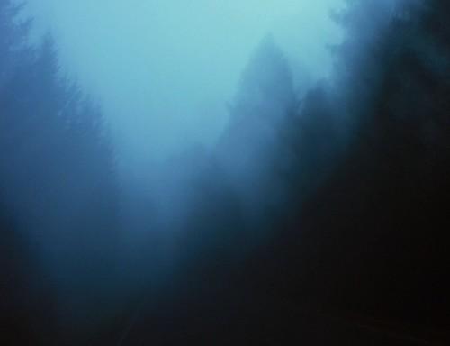 street blue autumn tree silhouette fog forest germany woods village herbst thuringia onecolor blau landschaft baum autumnal conifer nadelbaum herbstlich monocolored konifere bürden autumnallandscape landschaftimherbst herbstlichelandschaft