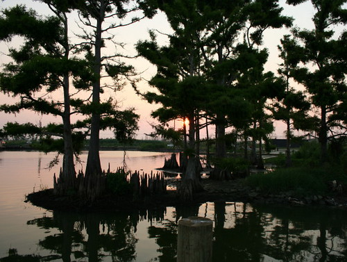 nature sunsets venicela