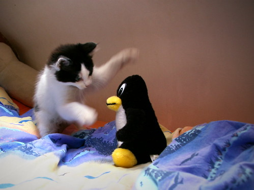 Tux attacked