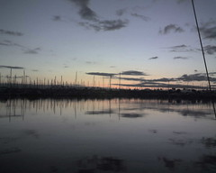 harbor island marina at dawn