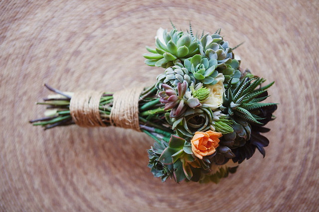 Succulent-Arrangements-Stephanie Williams-Project Wedding-Camille Styles