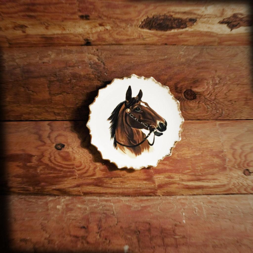 Horse themed bathroom decor