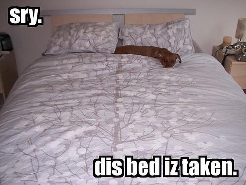 dis bed iz taken.