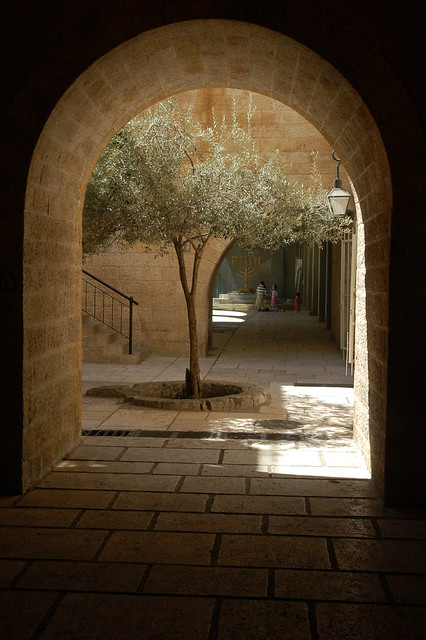 Cardo in Jerusalem Israel - Old City Jewish Quarter  Flickr - Photo Sharing!