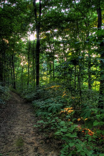 path wv westvirginia potomac joeldeluxe shepherdstown nctc nationalconservationtrainingcenter 3xp202 hdr