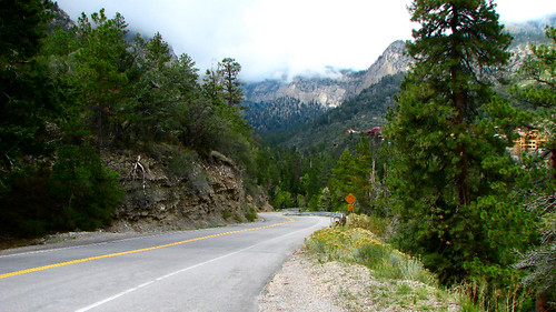 Day trips from Las Vegas, daytrips from Vegas - Mt. Charleston
