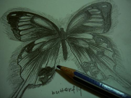 o level art coursework 2011