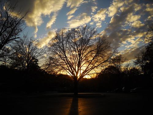 park sunset sky tree clouds columbiamo stephenspark