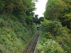 funicular, transport, rail transport, forest, rolling stock, track,