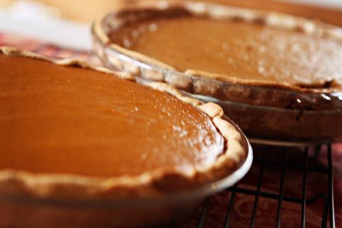 pies {62 of 365}