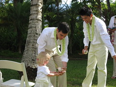 wedding ceremony hawaii