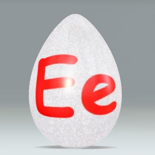 E Alphabet Egg Flickr Photo Sharing