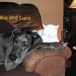 Mia and Lucy