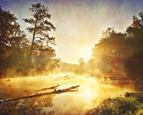 travel camping autumn sun mist reflection tree art fall texture tourism nature water sunshine fog pine vintage river georgia season landscape happy photo log scenery bright image sunny rays hdr highfalls sunruse stowers soloha svelana