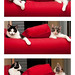 Kittens and the Big Red Chair